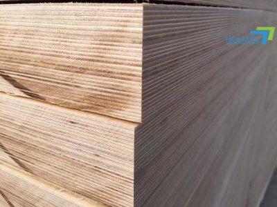 Địa chỉ cung cấp Plywood độ dày cao